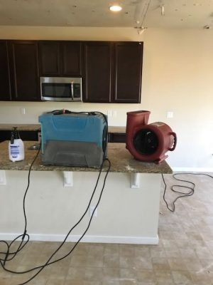 equipment-fans-carpet-cleaning-water-extraction